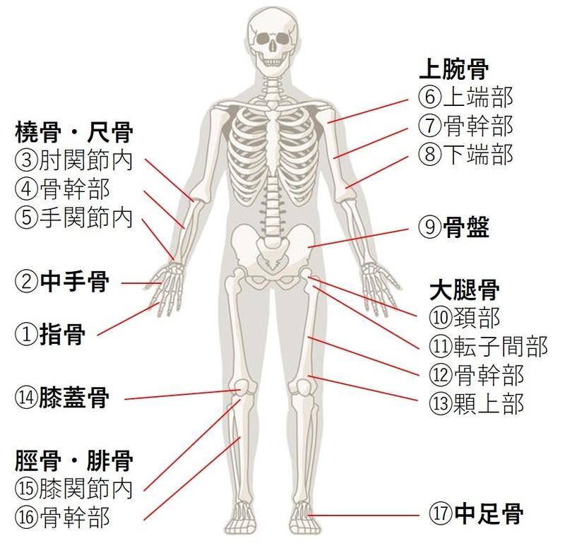 上 痛い 骨 と の の 押す 目
